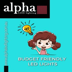 Budget Friendly LED Lights
